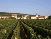 Etude de potentiel des énergies renouvelables : exemple de la ZAC du Pré Fleury en Bourgogne