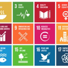 Le Cabinet Lamy environnement adhère au Global Compact pour répondre aux ODD